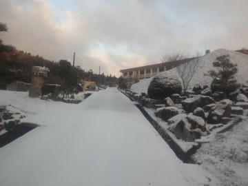 お正月寒波を受けた農場正面