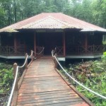 Mangrove Forest Preserve Visitor Centre