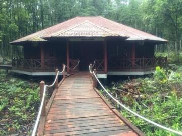 マングローブ保護林ビジターセンター