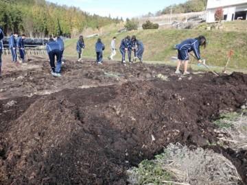 バーク堆肥の施肥作業