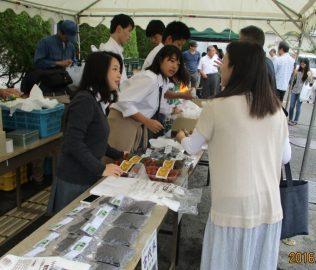 農作物の販売テント